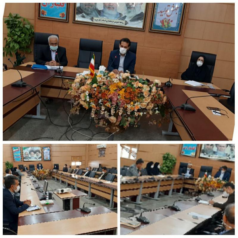 مناسب سازی معابر عمومی و اداری اسلام آبادغرب برای معلولان و افراد ناتوان